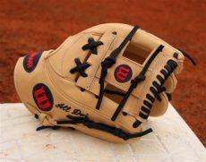 what pros wear best shortstop gloves swanson correa lindor - Wilson Shortstop Gloves