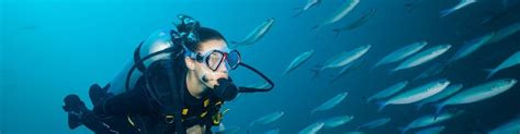scuba diving vacations beginners manta scuba