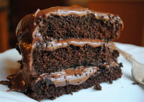 delicious chocolate cake hungry cake