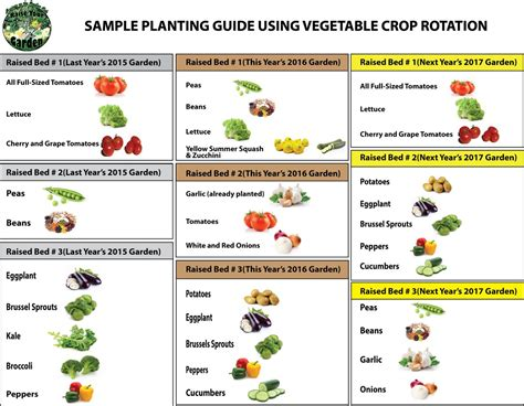 tom sproull twitter ready garden infographic crop rotation