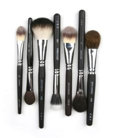 picasso brushes makeup malaysia piccasso makeup brush selection of blush brushes