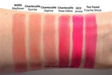 chantecaille lipstick swatches and mundane chantecaille lip chic in d 233 lice and review swatches 2013