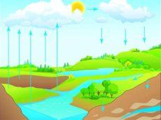 porque tira agua un clima 191 por qu 233 los oc 233 anos regulan la temperatura vix