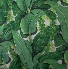 tropical leaf wallpaper wallpapersafari - Tropical Leaf Wallpaper Australia