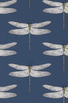 harlequin wallpaper dragonfly best 25 dragonfly wallpaper ideas on bathroom wallpaper uk only harlequin