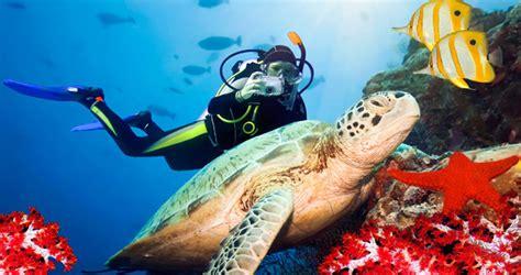 volunteer destinations world diving spots