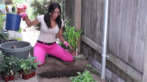 winter soil preparation vegetable gardening chef garden youtube