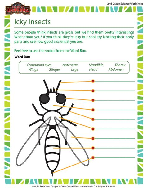 icky insects worksheet 2nd grade life science school