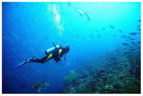 Scuba Dive Florida