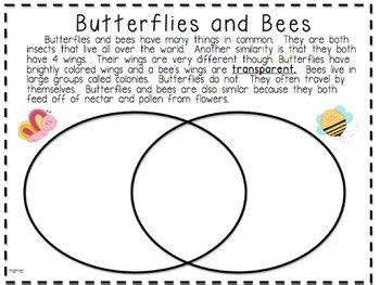 image result 2nd grade compare contrast worksheets compare