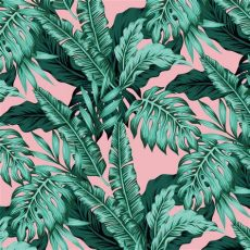 tropical leaf wallpaper australia tropical leaves wallpaper grafico
