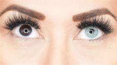 solotica contacts on dark brown eyes solotica hidrocor quartzo contact lenses on brown from paranalentes contact