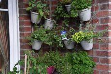 wandgarten system wandgarten so wird s was mit dem vertical gardening willkommen in franks kleinem garten