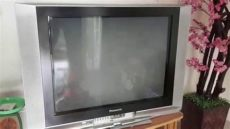 tv panasonic 29 panasonic crt tv 29 inch tc 29fg20ju series sightings