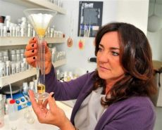 laura tonatto shoo tonatto perfumers directory luckyscent