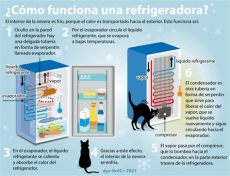 como funciona el deshielo de un refrigerador 191 c 243 mo funciona un refrigerador hago mi tarea