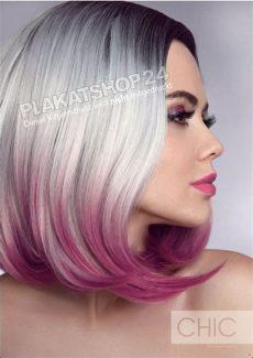 deckt elumen graue haare ab dekoposter f 252 r friseursalon mittellanges graues haar mit farbansatz graue haare haare ab und