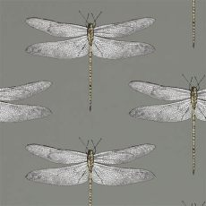 harlequin wallpaper dragonfly discover the harlequin demoiselle wallpaper 111242 at amara dragonfly wallpaper kitchen