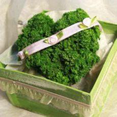 petersilienhochzeit brauche geschenke alles was ihr zur petersilienhochzeit unbedingt wissen solltet und tolle geschenkideen findet
