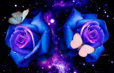 glitter rose wallpapers free download glitter roses backgrounds roses butterflies desktop background hd wallpapers blue roses