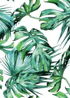 tropical leaf wallpaper australia tropical leaves pattern poster