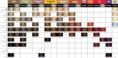 pravana chromasilk color chart pdf pravana chromasilk color chart amulette