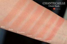chantecaille philanthropy cheek shade swatches коллекционный выпуск румян chantecaille cheek shade grace emotion bliss и smitten и