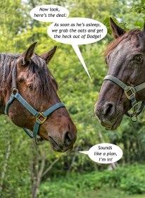 Eckley-Horses