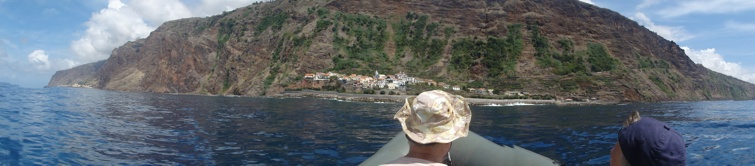 Whale Watching Madeira