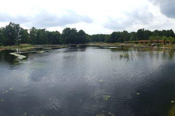 Panaroma Naturagart Tauchpark