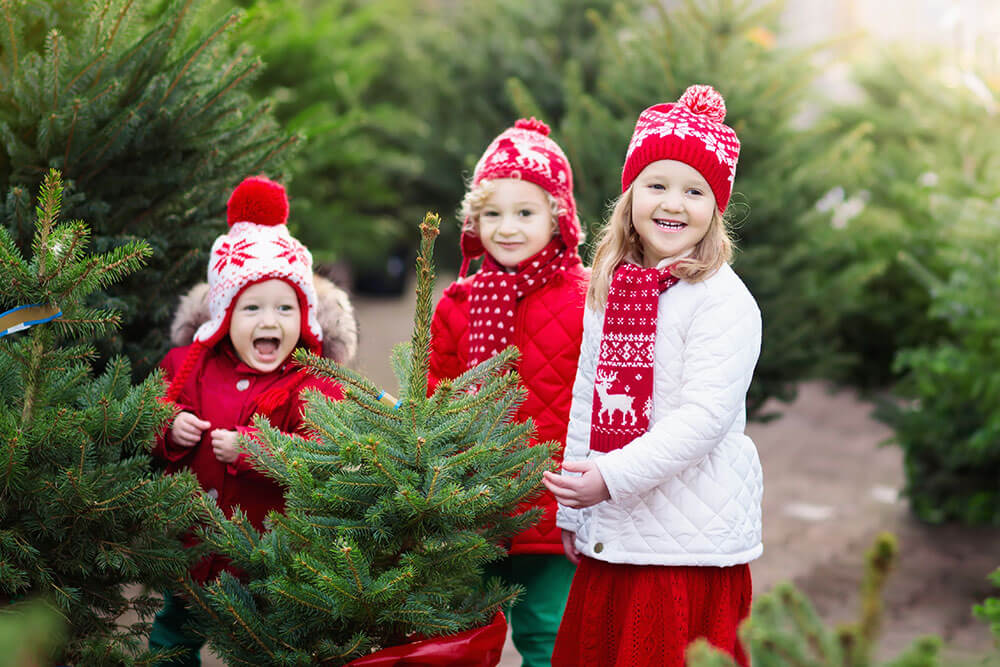 Christmas outdoor activities can help you reduce expenses for this holiday