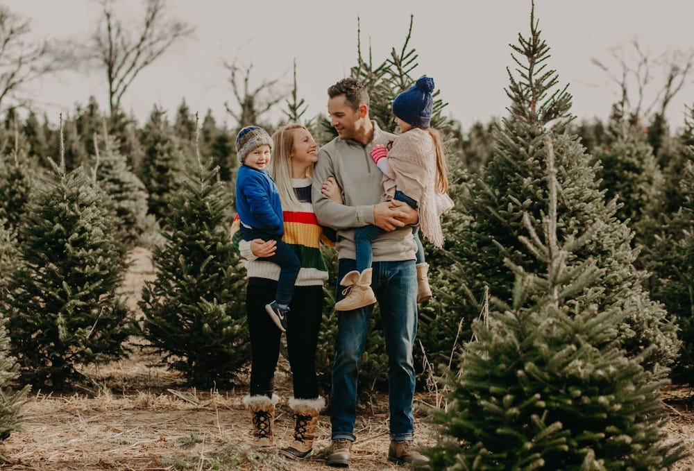 Head-to-a-Christmas-tree-farm-is-one-of-the-great-Christmas-outdoor-activities-to-help-you-choose-the-perfect-tree-for-your-budget