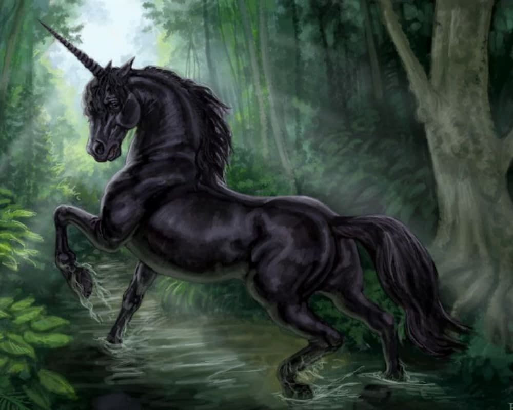 Black-unicorn-types-of-unicorn