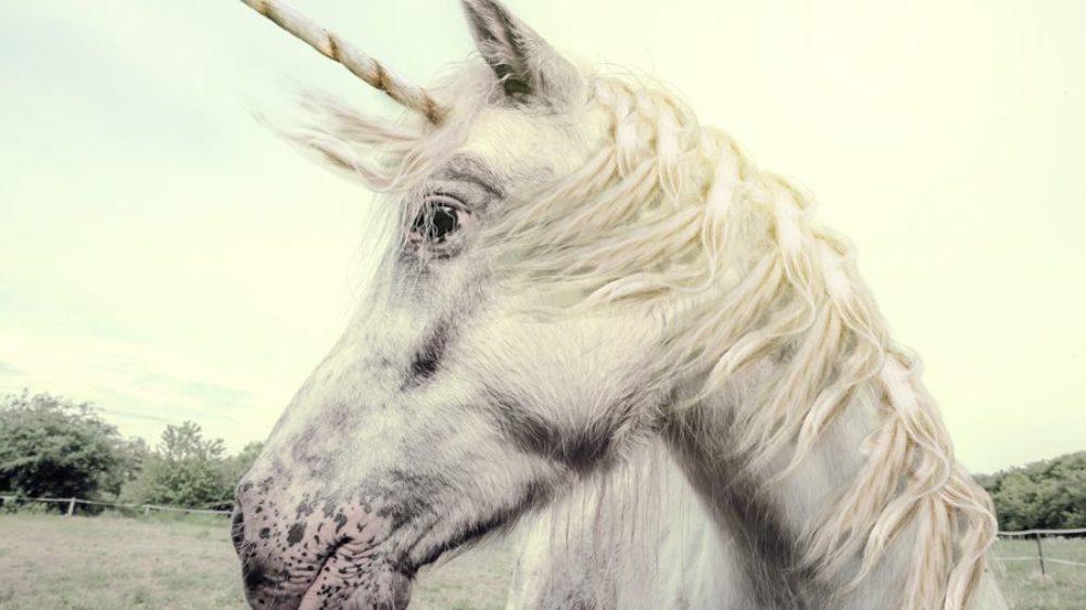 Europe-unicorn-types-of-unicorns