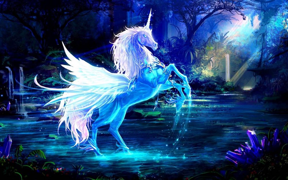 Types of unicorns you should know