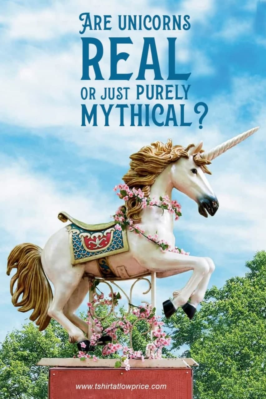 Unicorn facts for unicorn lovers