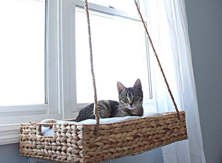 DIY Hanging Window Basket cat Perch