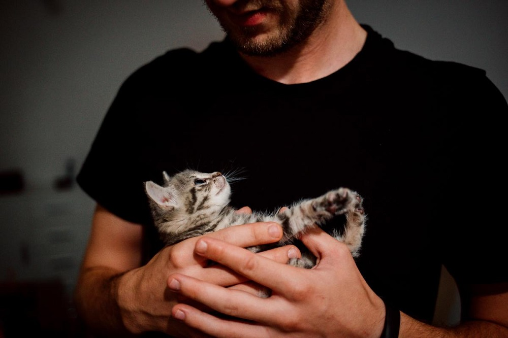 Cool gifts for cat dads