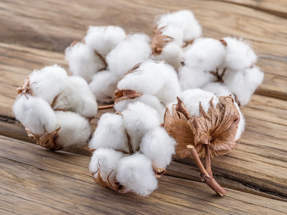 What's difference between pre shrunk cotton and regular cotton