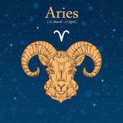 Aries Birthday Gift