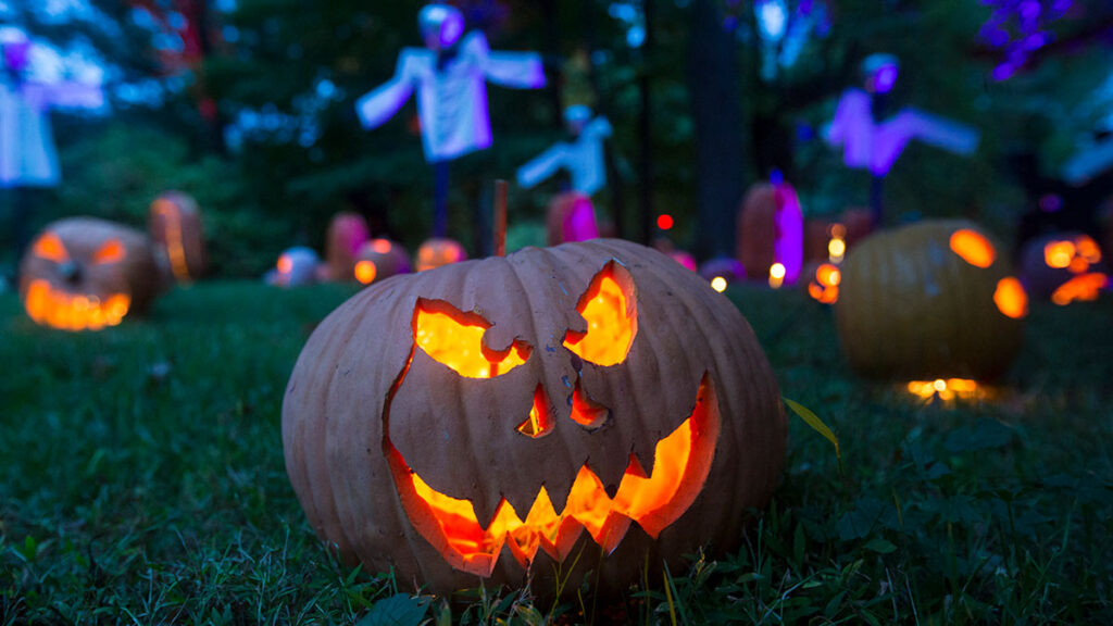 Why Halloween Day is important? What is Jack O Lanterns?