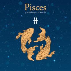 Pisces Birthday Gift