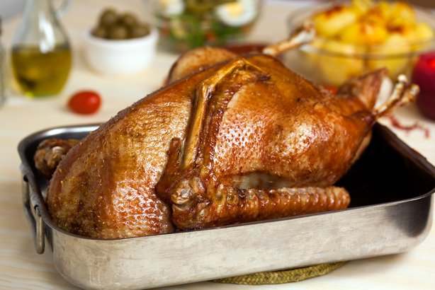 goose - Thanksgiving dinner ideas without turkey