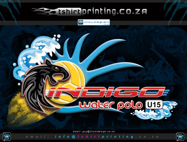 park-town-boys-water-polo-sports-team-logo-design,custom logo design, sports team logo, logo designer south africa