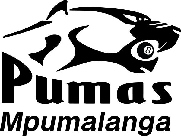 pumas-mpumalanga-shirts-supplier