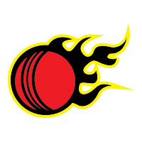 Cricket ball flame cricket team logo by tshirtprinting.co.za