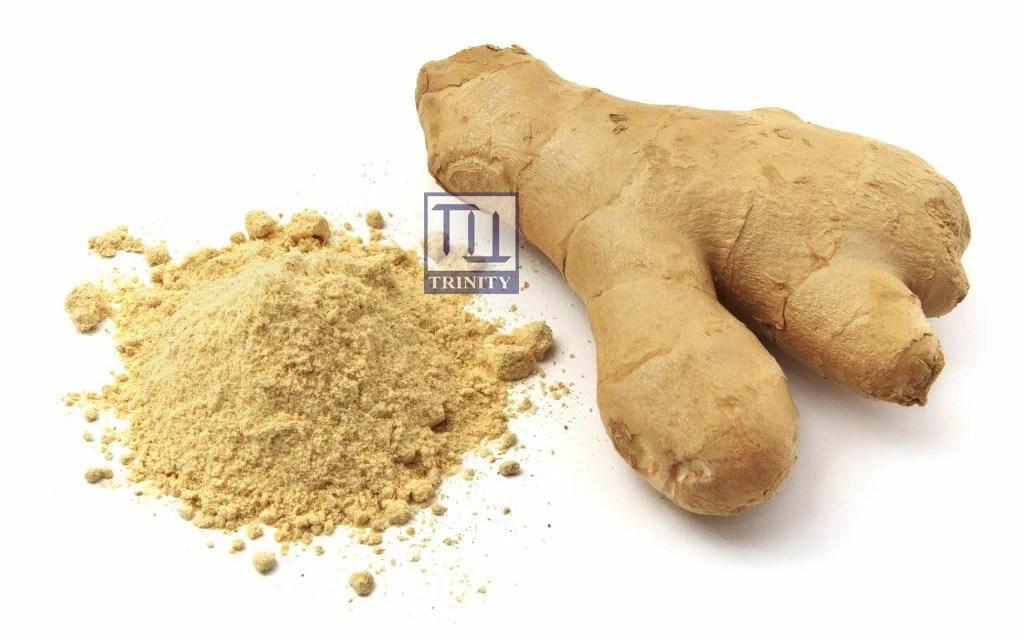 印度香料和食品專賣店 |臺灣樂天市場:Ginger Powder 印度薑粉