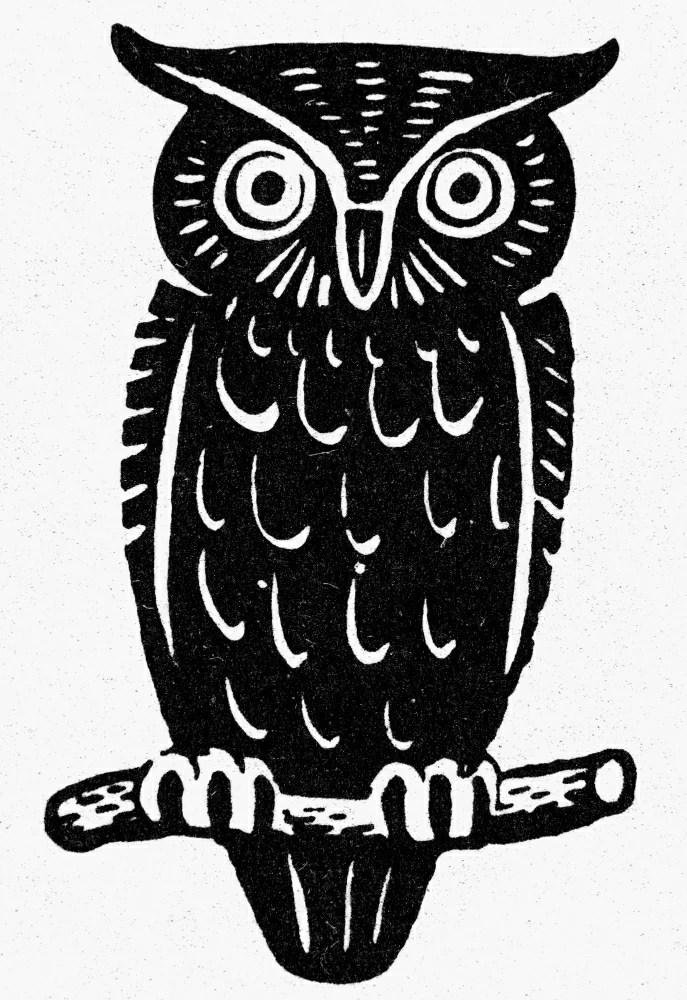 Posterazzi Symbol Wisdom Nthe Owl A Symbol Of Wisdom