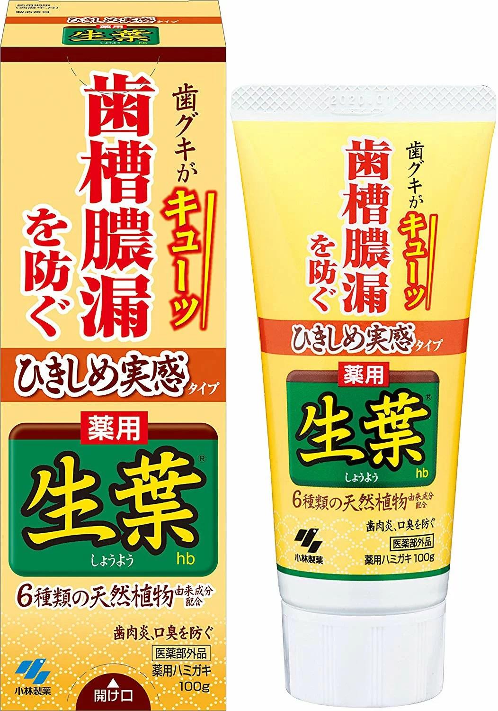日本原裝 小林製藥 生葉 齒槽膿漏 潔淨牙膏 100g | JJUSTGO家事購 - Rakuten樂天市場