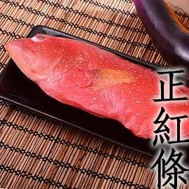 【石斑魚·石斑】紅條石斑魚 – TouPeenSeen部落格